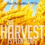 The Harvest Is Plenteous
